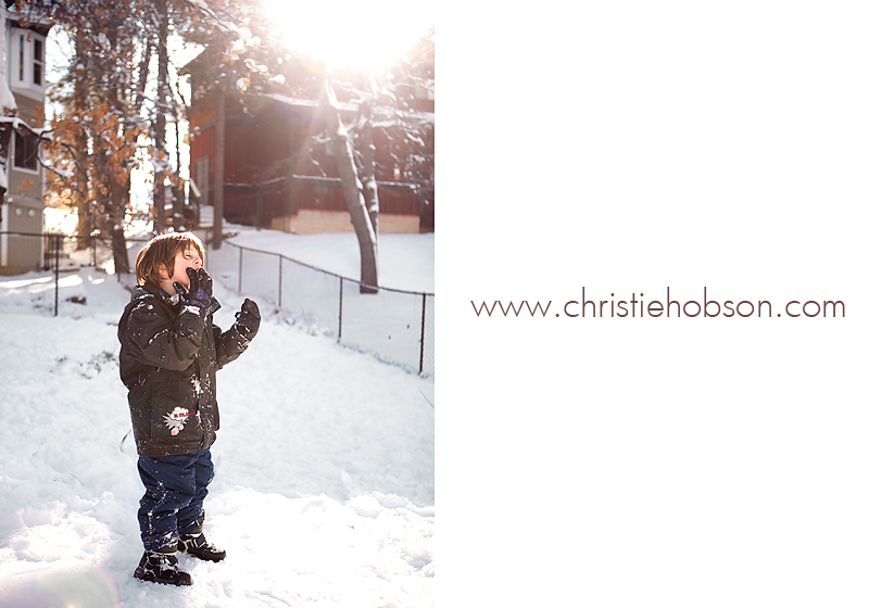Orange County Newborn and Family Photographer Christie Hobson