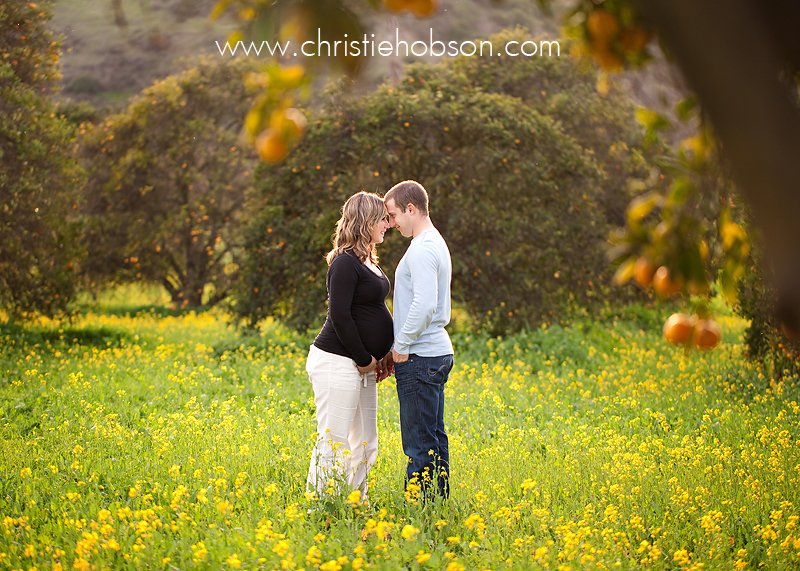 Orange County Newborn Baby Maternity and Family Photographer   Christie Hobson